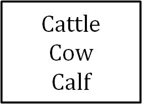 Cattle/Cow/Calf